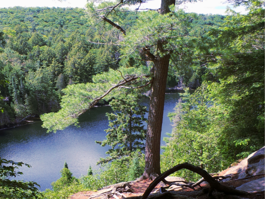 Backpacking Algonquin Park